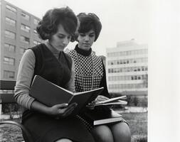 Two students reading on uptown  campus